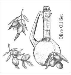Ink hand drawn olive oil set vector image vector image