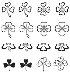 Leaves of clover vector