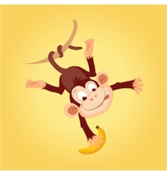 Monkey hanging on liana vector