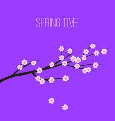 Sakura blossom flowers background vector