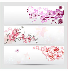 cherry blossom banners set vector image vector image