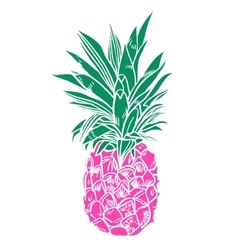 Pineapple tropical fruit object vector