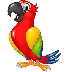 Cartoon funny parrot isolated on white background vector image vector image