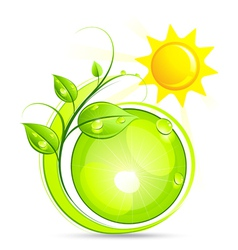 sun and plant vector image