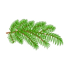 Spruce branch christmas tree vector