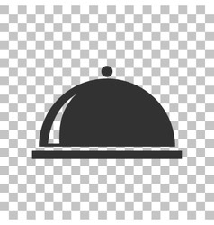 Server sign  dark gray icon on vector