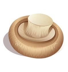 Fresh mushroom on white vector image
