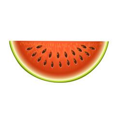 ripe striped watermelon realistic juicy vector image vector image