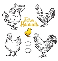 Set of different chickens vector image vector image