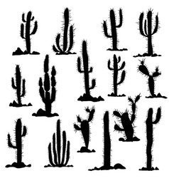 Silhouettes of cactuses and stones vector