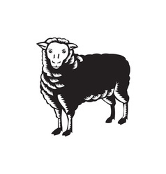 Sheep side view woodcut vector