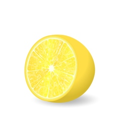 Lemon slice isolated vector