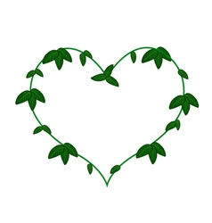 Green vine leaves in a heart shape wreath vector