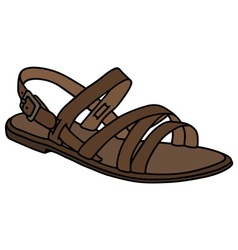 Leather low sandal vector image vector image