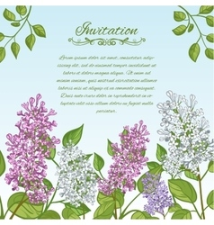 Floral card with lilacs on blue background vector image