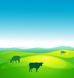 cow grazes in a meadow - vector image