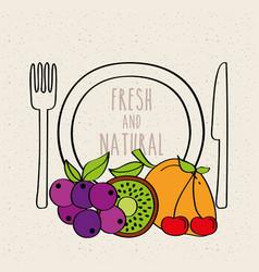 plate fork knife kiwi grapes mango carambola fresh vector image