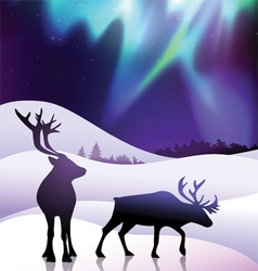 The aurora with a deers in the foreground vector