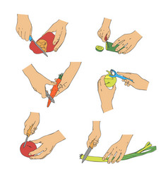 Cooking hands with knife cutting vegetables vector