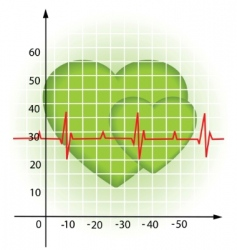 heartbeat diagram vector image