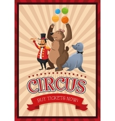 Presenter bear and seal cartoon of circus vector