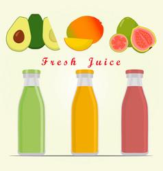 The theme fruit vector