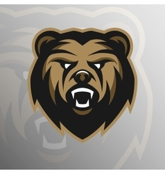 Angry Bear symbol emblem sport logo vector image
