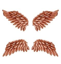 Bird Wing Set vector image