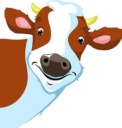 Cow peeking - vector