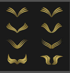 Golden wing set vector