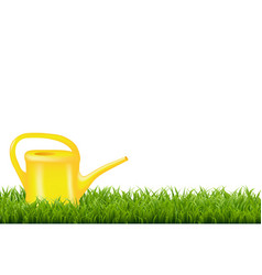 Watering can with green grass border vector