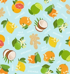 Citrus coconut and ginger seamless pattern on blue vector