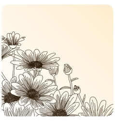 Daisy flowers on a beige background outline vector image vector image