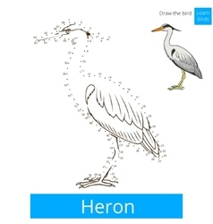 Heron bird learn to draw vector