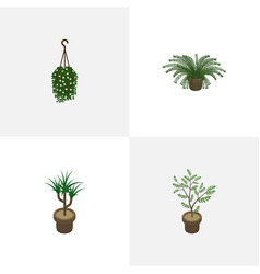 Isometric houseplant set of plant blossom vector
