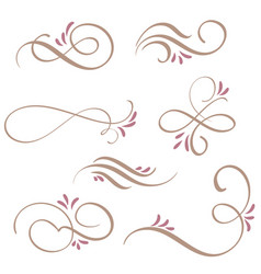 set of calligraphy flourish art with vintage vector image vector image