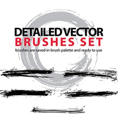 Set of highly detailed torn brush strokes st vector