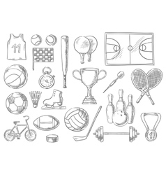 Sport balls items sketch isolated icons vector