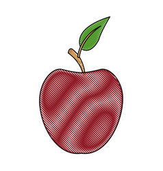 Red apple fruit with green leave vector
