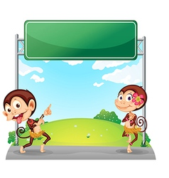 Two playful monkeys in front of the empty green vector