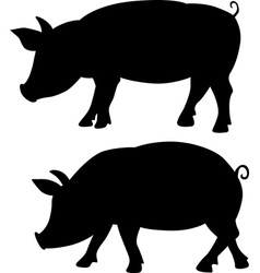 Pig silhouette - black vector