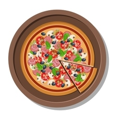Pizza on a plate  isolated on vector