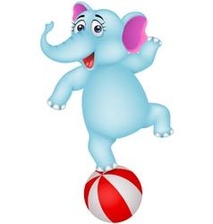 Elephant cartoon on ball vector