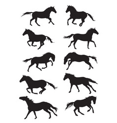 Set of horses silouettes vector