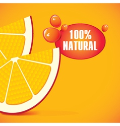 natural juice vector image vector image