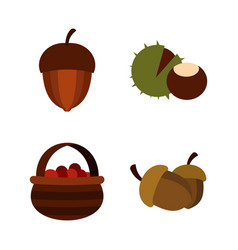 nuts icon set flat style vector image