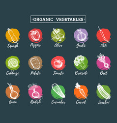 Organic vegetables cards set farm eco vector