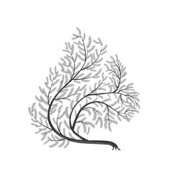 Stylized branches squirrel for use as logos on vector