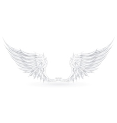 Wings White vector image vector image