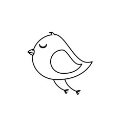 Cute bird isolated icon vector